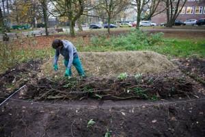 """Mathias bei der Arbeit: er legt ein """"Hügelbeet"""" im neuen Permakultur Garten von der alten Muthesius Kunsthochschule an."""